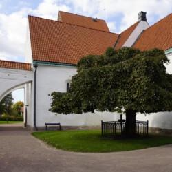 """Fotoausstellung """"Ögonblick"""" in unserer schwedischen Partnerstadt Karlshamn 22"""
